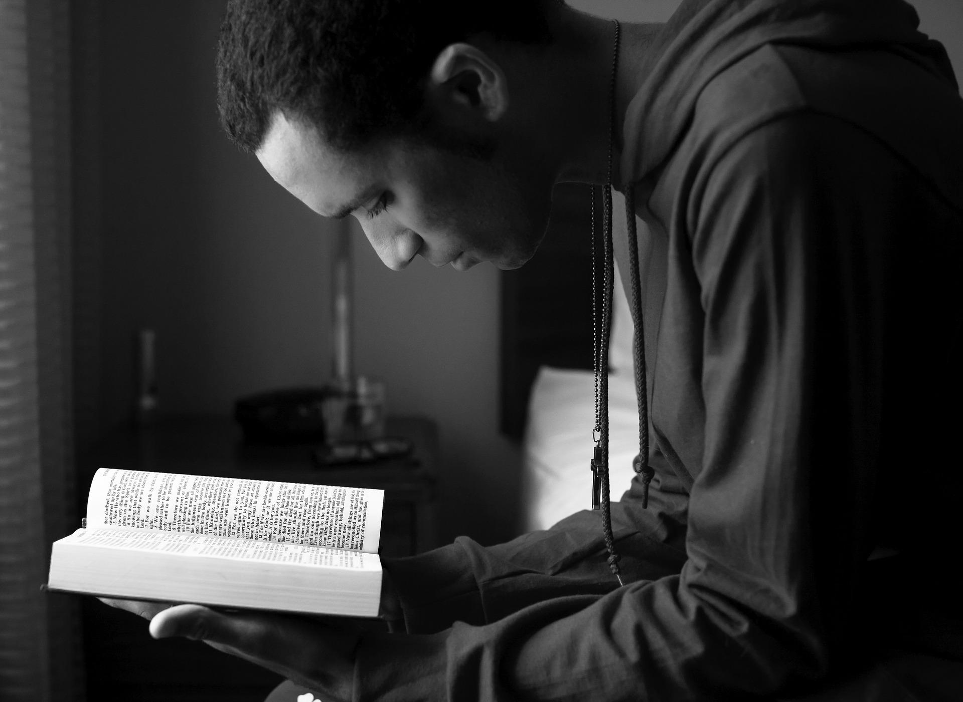 como ler livros lendo