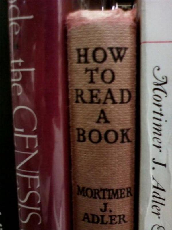 como ler livros lombada