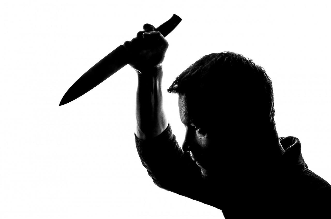 atentado a bolsonaro - criminosos