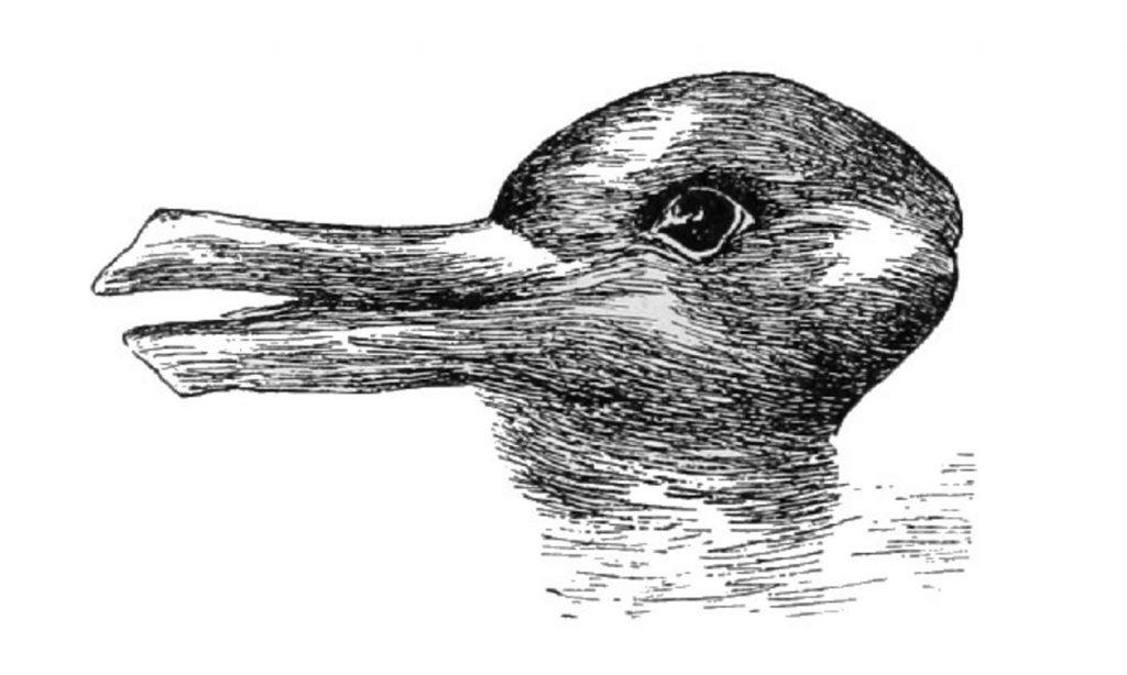 Roger Scruton pato-coelho